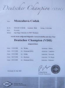 Deutscher_CH_VDH_Codak
