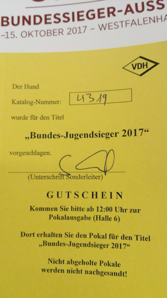 hundeausstellung dortmund oktober 2017